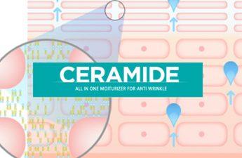 Ceramide