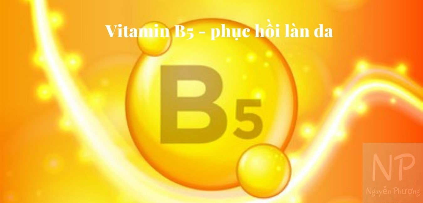 Tác dụng của Vitamin B5
